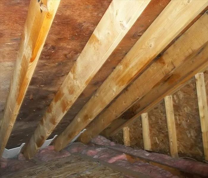 Mold remediation on sheathing of attic space Before