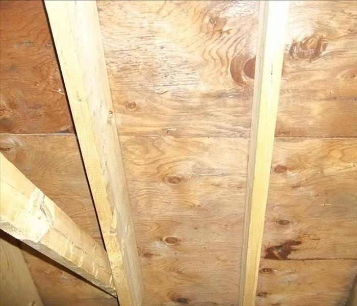 Mold remediation on sheathing of attic space After