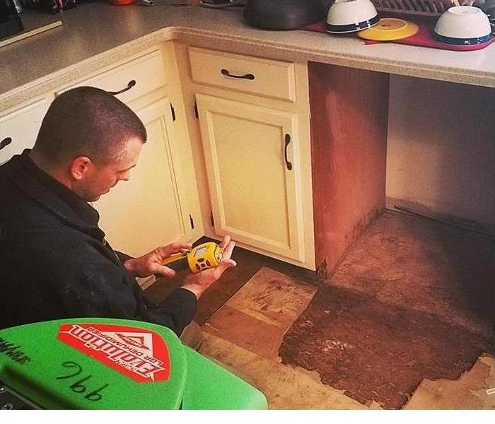 Mold Is No Match for SERVPRO of Beverly/Cape Ann