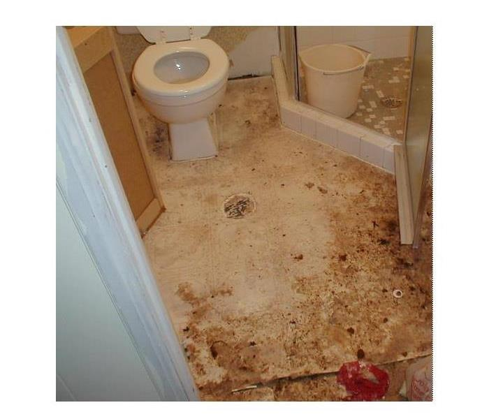 toilet and corner shower stall with sewage on tile floor