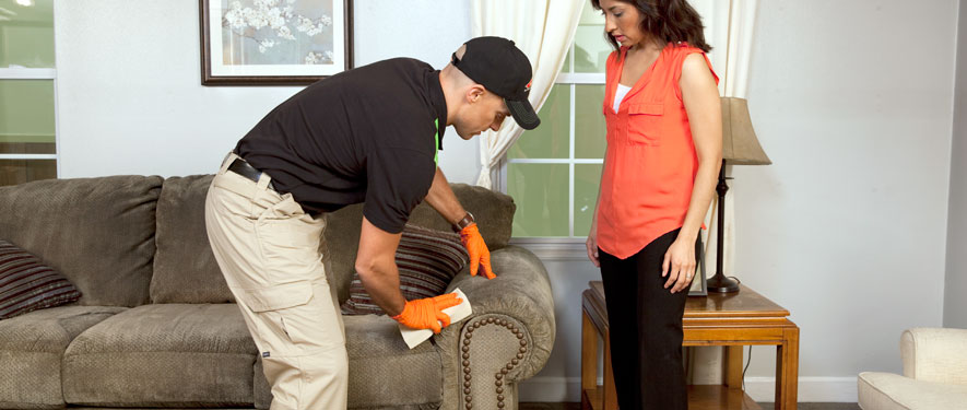 Beverly, MA carpet upholstery cleaning